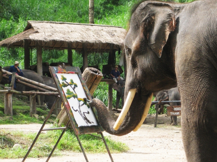 elephant_chiang